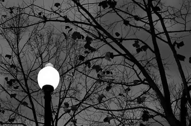 Twilight Lamppost #1