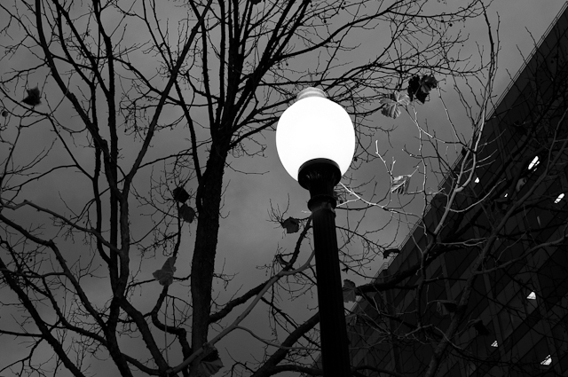 Twilight Lamppost #3